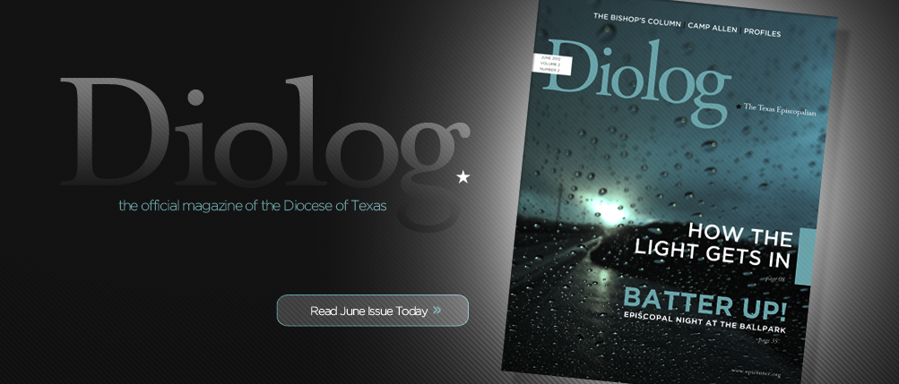 Diolog Magazine Subscription or Mailing List Change Form